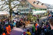 Festlich: der Einzug der Weisstanne auf dem Dorfplatz (Bild: Roger Grütter)