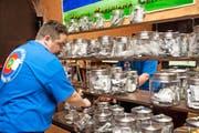 Im amerikanischen Colorado kann seit 2014 Cannabis legal gekauft werden. Wenn es nach dem Willen der Juso geht, dürfte dies auch bald in der Schweiz der Fall sein. (Bild: Getty/Theo Stroomer)