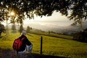 Sonnenaufgang auf dem Sonnenberg. (Bild: Pisu Amrein / Archiv Neue LZ)