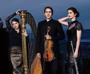 Spezieller Tacchi-alti-Klang: Kathrin Bärtschi (Harfe), Hannes Bärtschi (Viola) und Barbara Bossert (Flöte). (Bild: PD)