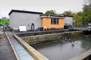 Das Schwyzer Verwaltungsgericht beerdigte den Neubau der Sattler Kläranlage. Der Gemeinde bleiben nur ein Anschluss an ein bestehendes Netz. (Bild Bert Schnüriger)