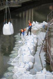 Die Lorze ist 5 Grad kalt und die Säcke eineinhalb Tonnen schwer. (Bild: Maria Schmid)