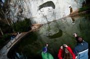 Das Löwendenkmal ist ein beliebter Touristenort in der Stadt Luzern. (Archivbild Neue LZ)