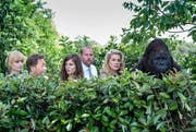 Die sechs Apostel (von links): Xenia «l'Allemande» (Anna Tenta), Marc (Serge Larivière), Aurélie (Laura Verlinden), François (François Damiens), Martine (Catherine Deneuve) und der Gorilla aus dem Zirkus. (Bild: PD)