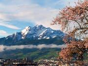 Frühling in Luzern. (Bild: Leserbild: Walter Buholzer)