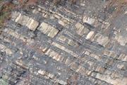 Im Pilatus-Schlierengebiet auf Alpnacherseite tritt verbreitet Flyschsandstein auf. (Bild: zvg)