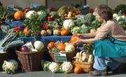 Karin Steul richtet einen Stand mit Obst und Gemuese aus biologischem Anbau ein auf einem Markt in Dresden, 29. September 2006. Obst und Gemuese kommen bei deutschen Verbrauchern haeufiger auf den Tisch als noch vor 40 Jahren. Wie das Statistische Bundesamt am Donnerstag, 12. Okt. 2006, mitteilte, wurden 2003 in den privaten Haushalten 22 Prozent der Nahrungsmittelausgaben fuer Obst und Gemuese aufgewendet. (AP Photo/Matthias Rietschel) (Bild: MATTHIAS RIETSCHEL (AP))