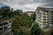 Bild: Pius Amrein, Luzern, 2. September 2015