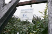 Eine Bautafel der Kingbow Holding. (Bild: Werner Schelbert (Zug, 31. Oktober 2012))