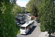 Möglicher Standort des Salle Modulable: Das Inseli (Bild: Boris Bürgisser / Neue LZ)