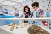 Maria Betschart und Priska Häusler aus Unterägeri betrachten vom Zoll beschlagnahmte Objekte.Bild: Stefan Kaiser (Zug, 28. Oktober 2016)