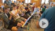 Juniors Brass Band Seetal. (Bild: PD)
