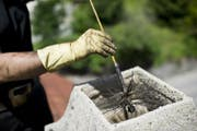 Ein Kaminfeger bei der Arbeit. (Bild: Ennio Leanza / Keystone (Auenstein, 26. Juni 2012))