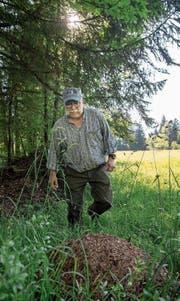 René Felder (62) bei einem Ameisenhaufen am Schwendelberg. (Bild: Nadia Schärli (Horw, 29. Mai 2017))