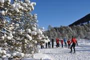 Lauf-Instruktion in einer herrlichen Schneelandschaft im Langis. (Bild: Robert Hess / Neue OZ)