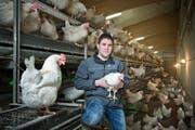 Testet seit einem Jahr Dualhühner. David Bründler in seinem Stall auf dem Rooterberg. (Bild: Dominik Wunderli / Neue LZ)