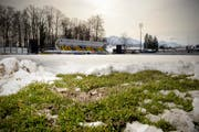 Der Zustand des Gersag-Rasens am vergangenen Dienstag. (Bild Pius Amrein/Neue LZ)