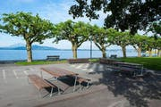 Die neuen Tische und Bänke entlang der Seepromenade in Zug laden Besucher dazu ein, sich unter freiem Himmel zu treffen. (Bild: pd)