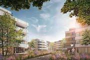 So könnte die Überbauung Lindenpark in Dagmersellen dereinst aussehen. (Bild: Visualisierung PD)