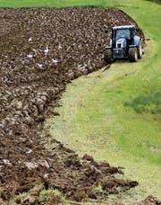 Dank des Grenzschutzes können Bauern ihre Produkte zu einem höheren Preis verkaufen. Das System führe aber zu Ineffizienz und Fehlanreizen, schreibt der Bundesrat. (Bild: Larisa Grünewald/Getty)