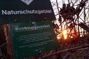 Das Landschaftsschutzgebiet im Choller in Zug. (Archivbild Werner Schelbert/Neue ZZ)