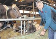 Werner Keiser füttert gerade die Kühe Fara (vorne) von Martin Camenzind vom Zugerberg – und Arosa, die Pius Enz aus Neuägeri gehört. (Bild: Alina Rütti)