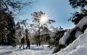 Spaziergang in winterlicher Landschaft. (Bild EQ Images)