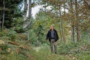 Der Nottelerwald ist für den obersten Luzerner Förster, Bruno Röösli (46), der Wald der Zukunft. Bild: Pius Amrein (Nottwil, 12 Oktober 2016)