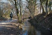 Die Alte Lorze im Bereich Schochenmühle. (Bild: Stefan Kaiser (28. Februar 2018))