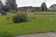 Diesen Baum beim Schulhaus Dorf haben die Täter mutwillig umgeknickt. (Bild: pd)