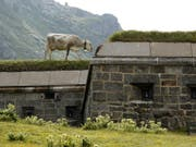 Früher ein Bunker der Armee, heute ein Museum und Bummelplatz für Kühe: Anlage auf dem Gotthardpass. Zahlreiche Bunker haben ein neues Leben erhalten. (Archivbild) (Bild: KEYSTONE/URS FLUEELER)