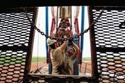 Zwei Männer arbeiten an einem Ölturm in Williston im US-Bundesstaat North Dakota. (Bild: Gregory Bull/Keystone (Williston, 26. Juli 2011))