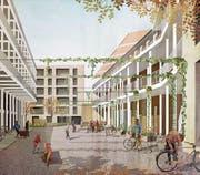 So soll die Teiggi-Siedlung in eineinhalb Jahren aussehen. Visualisierung: Lukas Murer/Raumfalter Architekten, Zürich