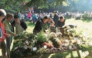 Die jährliche Pilzausstellung beim Horbach auf dem Zugerberg ist bei den Besuchern beliebt. (Bild: Charly Keiser (24. September 2017))