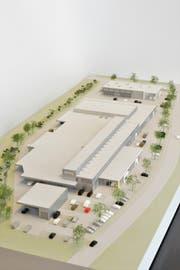 Das geplante Nutzfahrzeugcenter in Buchrain in einem 3D-Modell. (Bild: Visualisierung: PD)