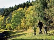 Viele Wälder in der Schweiz sind im Besitz von Bürgergemeinden. (Bild: Laurent Gilliéron/Keystone (Saint-George, 4. Oktober 2009))