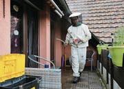 Marco Rogenmoser bei einer Wespenentsorgung auf einer Dachterrasse in Hünenberg. (Bild: Stefan Kaiser (16. Juni 2017))