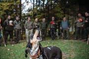 Auch sie muss sich an einem neuen Gesetz orientieren: die Jagdgesellschaft Kriens-Grüebli. (Bild: Nadia Schärli (Kriens, 20. Oktober 2017))