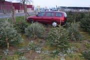 Das Auto stoppte erst in der Christbaumkultur. (Bild: Luzerner Polizei (Aesch, 31. Januar 2018))