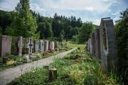 Gräber auf dem Friedhof Staffeln. (Bild: Dominik Wunderli)