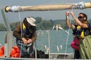 Tim Alexander (l.) und Thomas Poulleau lösen Egli und Kaulbarsche aus einem Vertikalnetz. (Bild: Amt für Wald und Wild)