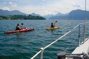 Es lockt der See: Bootssportler auf dem Vierwaldstättersee. (Bild: Leserbild Heinz Schürmann)