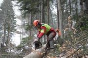 Die Forstreviere auf dem Gebiet der Korporation Uri sollen auf lange Sicht mit den Allmendkreisen deckungsgleich sein. (Symbolbild: Urner Zeitung)