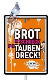 Mit diesem Plakat wird in der Stadt Luzern darauf aufmerksam gemacht, das Füttern von Tauben zu unterlassen. (Bild: Grafik: Irene Haldimann / Yeap Design)