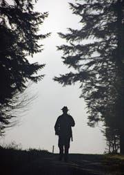 Ein Jäger unterwegs im Wald. (Bild: Leserbild: Werner Hüsler, Neudorf (5. Dezember 2015))