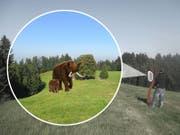 Der Panoramawanderweg von Oberwald über Fritzenfluh bis Ahorn im Napfgebiet soll mit interaktiven Stationen und Themenrastplätzen zu einem Mammut-Trail ausgebaut werden. (Bild: Visualisierung pronatour GmbH Leobendorf)
