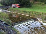 Ein Seitenbach, der in die Fontanne einmündet, war mit Gülle verschmutzt. (Bild Feuerwehr Wolhusen)