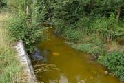 Der durch die Verschmutzung grün gefärbte Bielbach. (Bild: Luzerner Polizei (Ruswil. 20. Juli 2017))