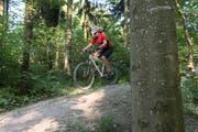 Mountainbiker beanspruchen Waldwege besonders stark. (Bild:Christian Beutler/Keystone)