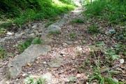 Der steile Aufstieg östlich der alten Lorzentobelbrücke weist bis heute Reste einer historischen Pflästerung auf. Einst war dieser Weg eine «Hauptstrasse» vom Tal in die Berggemeinden. (Bild: Andreas Faessler (Menzingen, 21. Juli 2017))